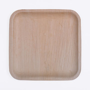 Biodegradable Disposable Plates manufacturers in coimbatore